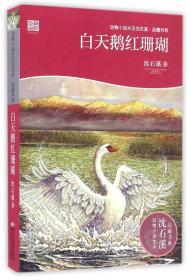 动物小说大王沈石溪·品藏书系:白天鹅红珊瑚
