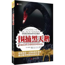 围捕黑天鹅:极端波动性市场的投资风险防范
