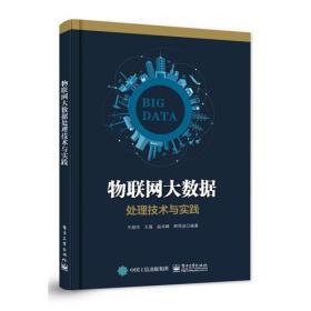 物联网大数据处理技术与实践