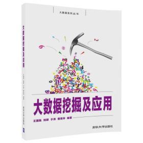 大数据系列丛书:大数据挖掘及应用