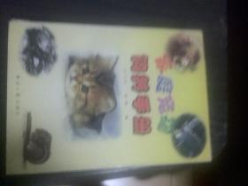 家庭宠物饲养手册