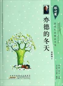 冰心奖获奖作家精品书系:亦德的冬天