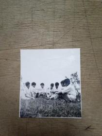 早期集体草地听歌照片