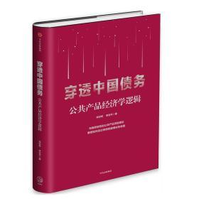 穿透中国债务(公共产品经济学逻辑)(精)