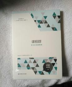 品质课程丛书:课程群:学习的深度聚焦 杨四耕、