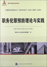 职务犯罪预防理论与实践