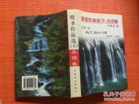 晓圣作品选(下)小说卷(32开精装)