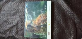 VCD: BBC王牌自然探索大片----飞禽传(VCD,10张) 未开封  书品如图 避免争议