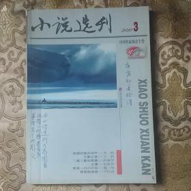 小说选刊2010年第3期