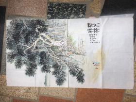 鼓浪屿《独木成林》辛已年菽庄海边环岛路榕树写生戴金宝---原画