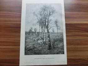 【现货 包邮】1890年木刻版画《盛夏的田园风光》(Idylle im Hochsommer)尺寸约41*28厘米 (货号 300560)