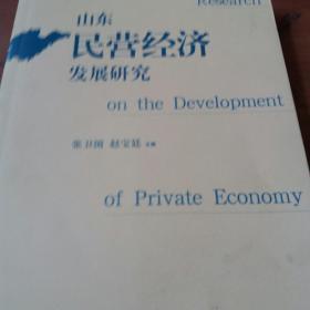 山东民营经济发展研究