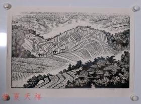 著名版画家 李增霆木刻版画作品《梯田》一幅,有亲笔签名。保真。
