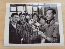 超大尺寸:1976年 辽宁朝阳农学院,试制成功棉花新品种---零式果枝棉花