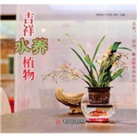 吉祥水养植物