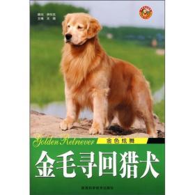 中华神犬:藏獒 王晓 吴建春 陕西科学技术出版社 9787536943261