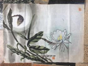 《莲花》金宝写作---原画