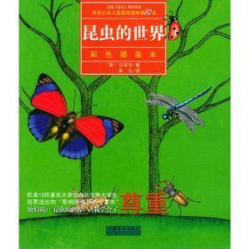 彩色插画本-昆虫的世界