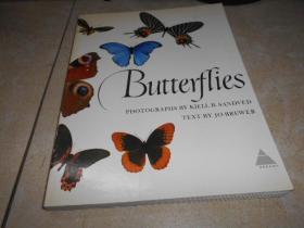 BUTTERFLIES    蝴蝶(1978年英文 原版 平装 大16开,大量精美图片)