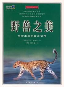 野兽之美:插图珍藏本