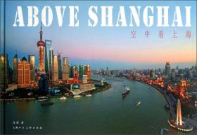 空中看上海