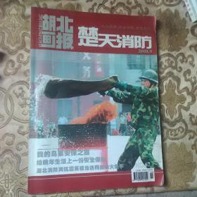 湖北画报楚天消防2008年第9期