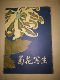 李行天菊花写生/16全 1979.10上海一版一印函套有点旧.内不错