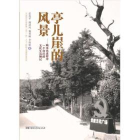 SJ亭儿崖的风景——城市化进程中一个村庄的文化生活侧记