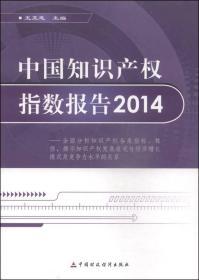 中国知识产权指数报告2014