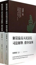 解读最高人民法院司法解释、指导案例民事卷