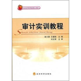 审计实训教程 袁小勇 王健琪 经济科学出版社 9787514114676