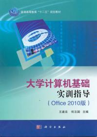 大学计算机基础实训指导 (Office 2010版)