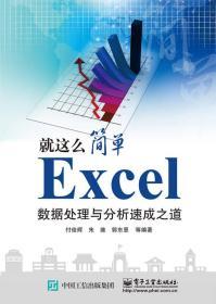 Excel数据处理与分析速成之道/就这么简单