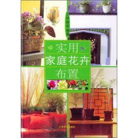 实用家庭花卉布置