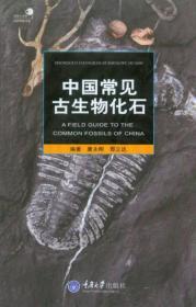 中国常见古生物化石
