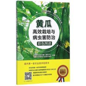 黄瓜高效栽培与病虫害防治彩色图谱