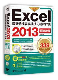 Excel数据透视表实战技巧精粹辞典