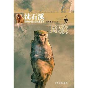 沈石溪动物小说大PARTY:兵猴(儿童小说)