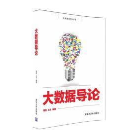大数据导论/大数据系列丛书