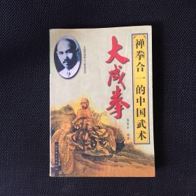 禅拳合一的中国武术大成拳