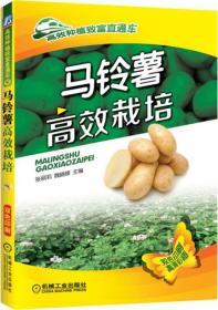 高效种植致富直通车:马铃薯高效栽培