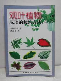 观叶植物成功的栽培方法