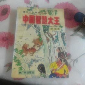 中国智慧大王(插图本)