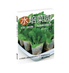 水培菜园(无货,重印时间长)