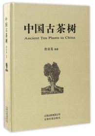 中国古茶树