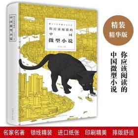 精装 你应该阅读的中国微型小说 汕头大学出版社