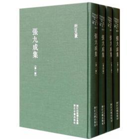 张九成集(全四册)