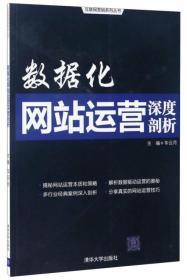 正版库存 数据化网站运营深度剖析(互联网营销系列丛书)