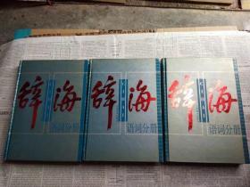 辞海1999年版语词分册(上中下)全三册-精装,请看描述