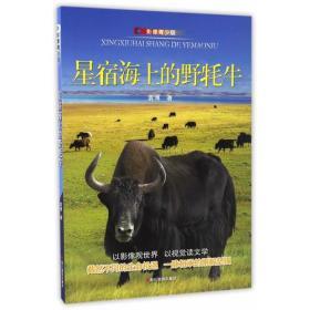 星宿海上的野耗牛
